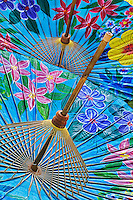 Decorative umbrellas drying after hand painting by local artists at Umbrella Making Center, Bo Sang, just outside Chiang Mai, Thailand