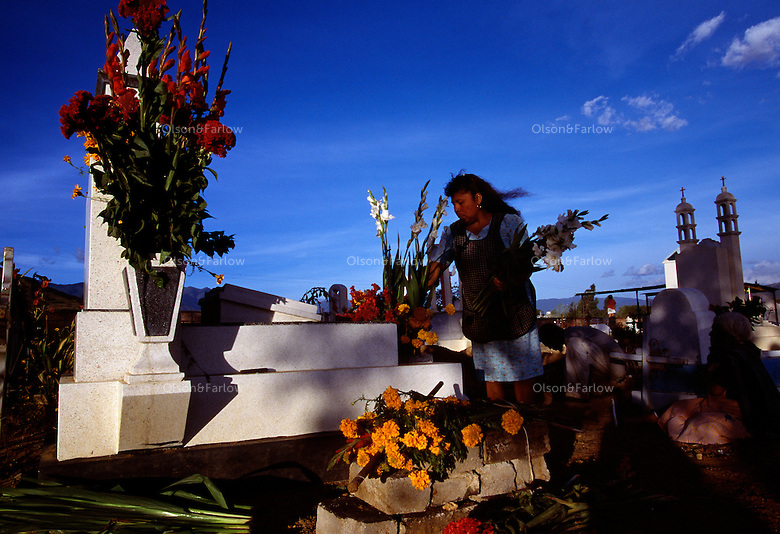 A woman places flowers on a grave for Day of the Dead celebrations outside of Oaxaca city.  Dia de los Muertos is Mexico's most characteristic fiesta when the souls of the dead return to the earth and families build alters in their homes and visit the cemeteries.<br /> <br /> They commune with their loved ones by taking gifts of flowers and the favorite foods of the deceased.