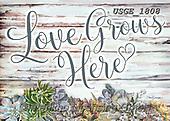 Dona Gelsinger, STILL LIFE STILLEBEN, NATURALEZA MORTA, paintings+++++,USGE1808,#i#, EVERYDAY,love,grows ,text,poem,wording