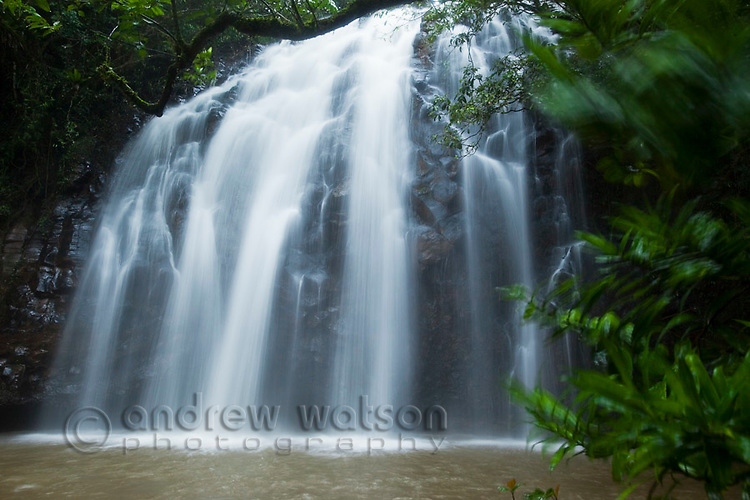 Elinjaa Falls - part of the Waterfalls Circuit on the Atherton Tablelands.  Millaa Millaa, Queensland, Australia