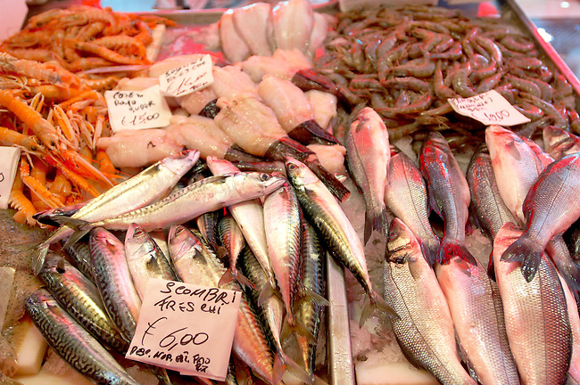Fresh Sea Food & Fish - Bass, Macrel, Prawns - Chioggia - Venice Italy