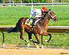 Final Forum winning at Delaware Park on 10/3/16