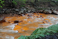 "Muddy Creek, close to its confluence with the Cheat River, is heavily polluted by acid mine drainage (AMD)  from coal mines in the area abandoned decades ago. The orange sludge staining rocks in Muddy Creek, commonly known as ""yellow boy"", is caused by oxidation of sulfide minerals closely associated with coal seams, particularly pyrite, which produces sulfuric acid that in turn precipitates iron into the water. The increased acidity and dissolved metals effectively result in a stream devoid of living things. The Cheat River watershed, West Virginia, USA."