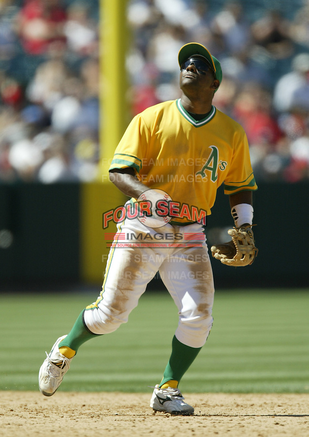 Miguel Tejada of the Oakland Athletics runs under a pop fly during a 2002 MLB season game against the Los Angeles Angels at Angel Stadium, in Anaheim, California. (Larry Goren/Four Seam Images)