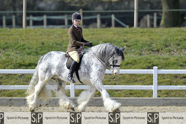 Championship for classes 18 and 19. Affiliated Spring Showing. Brook Farm Training Centre. Essex. 03/04/2016. MANDATORY Credit Garry Bowden/Sportinpictures - NO UNAUTHORISED USE - 07837 394578