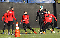 Marijan Cavar (Eintracht Frankfurt),Marc Stendera (Eintracht Frankfurt), Marco Fabian (Eintracht Frankfurt), Carlos Salcedo (Eintracht Frankfurt) - 14.02.2018: Eintracht Frankfurt Training, Commerzbank Arena