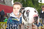 """MAN'S BEST FRIEND: Paul Guerin, Tralee, with his Great Dane """"Kyle"""" at the Killarney dog show on Tuesday.   Copyright Kerry's Eye 2008"""