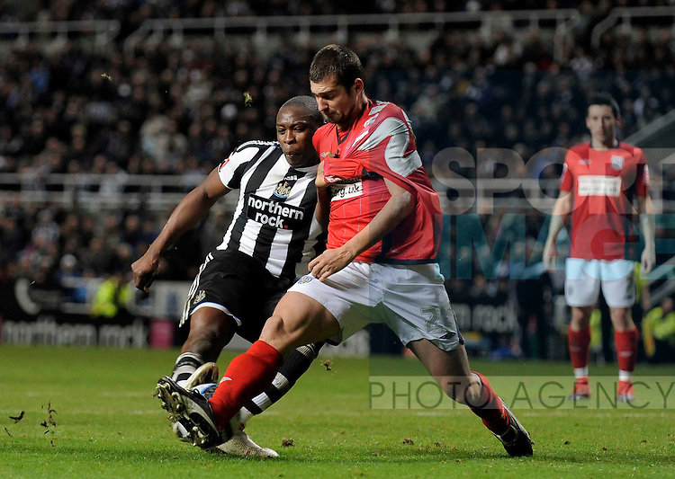 Newcastle's Shola Ameobi and West Brom's Gabriel Tamas.