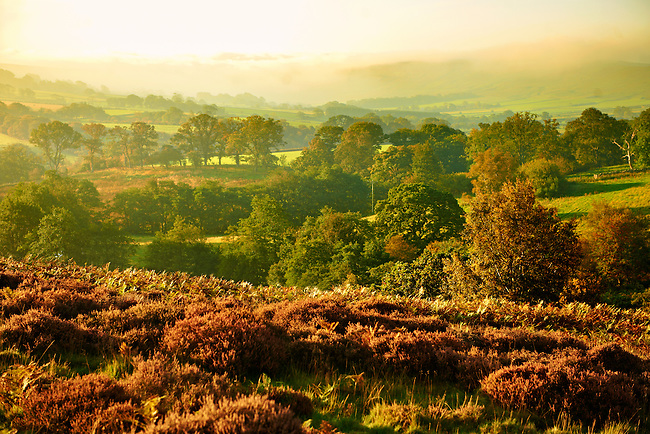 Westerdale at sunrise. North Yorks National Park, North Yorkshire, England