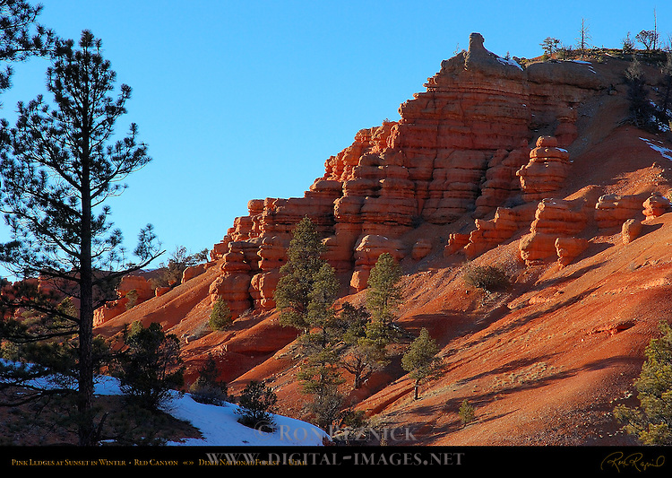 Pink Ledges at Sunset in Winter, Red Canyon, Dixie National Forest, Utah