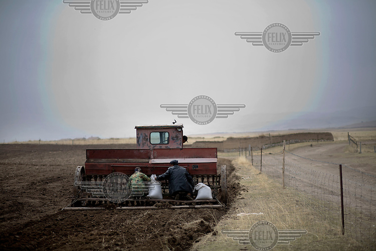 Farmers spread and plough seeds and fertilizer into the ground near Qinghai Lake.