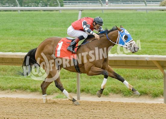 Unicorn Girl winning at Delaware Park on 5/30/12