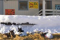 Sled Dog Team Rests Outside McGrath Rec Center Iditarod 2005