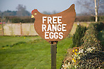 Free range eggs sign shaped as a hen, Tunstall, Suffolk, England