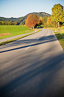 Small 2 lane rural road near forggensee in Allgäu region, Bavaria, Germany