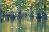 63895-053.18 Bald Cypress (Taxodium distichum) trees Horseshoe Lake SP   IL