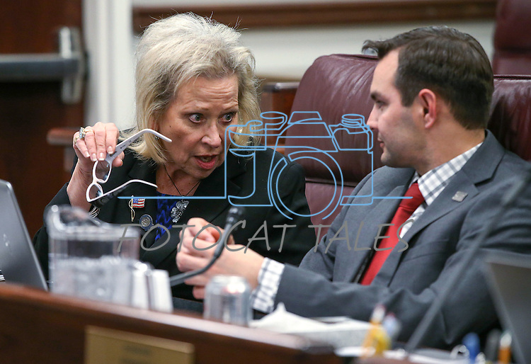 Nevada Assembly Republicans Victoria Dooling, R-Las Vegas, and Assemblyman Derek Armstrong work in a committee hearing at the Legislative Building in Carson City, Nev., on Friday, April 10, 2015. <br /> Photo by Cathleen Allison