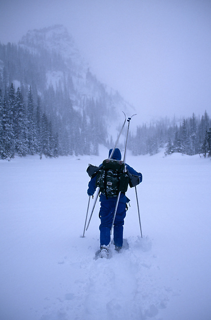 A man snowshoeing in the backcountry during a winter storm, Rocky Mtn Nat'l Park, CO