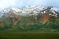 Scenic vista of the Mount Pendleton with the first dusting of snow taken from Polychrome Pass, Denali National Park, Alaska