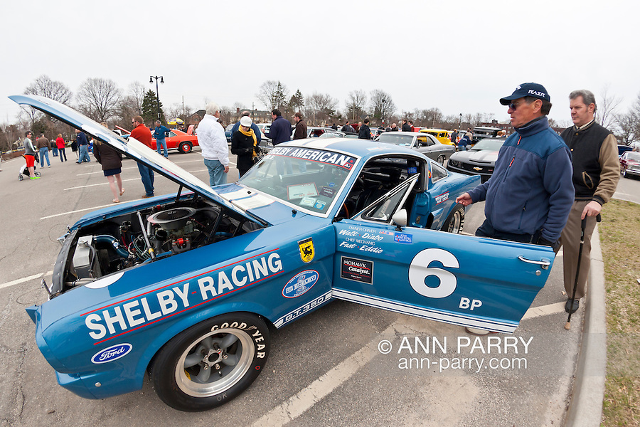 March 31, 2013 - Garden City, New York, U.S. - This 1966 Shelby GT 350, in Guardsman Blue with Wimbleton White Stripes, is a racing car at the 58th Annual Easter Sunday Vintage Car Parade and Show sponsored by the Garden City Chamber of Commerce. Hundreds of authentic old motorcars, 1898-1988, including antiques, classic, and special interest participated in the parade.