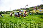 Action from the start of the Barr Na Sraide Plate at the Cahersiveen Races on Saturday.
