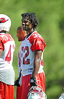 Jul 30, 2008; Flagstaff, AZ, USA; Arizona Cardinals running back Edgerrin James during training camp on the campus of Northern Arizona University. Mandatory Credit: Mark J. Rebilas-
