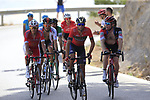 Riders including Vincenzo Nibali (ITA) Bahrain-Merida on the slopes of Sierra de la Alfaguara  during Stage 4 of the La Vuelta 2018, running 162km from Velez-Malaga to Alfacar, Sierra de la Alfaguara, Andalucia, Spain. 28th August 2018.<br /> Picture: Eoin Clarke | Cyclefile<br /> <br /> <br /> All photos usage must carry mandatory copyright credit (&copy; Cyclefile | Eoin Clarke)