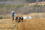 Nippenose Valley. Amish woman plowing in early Spring with four mule team.