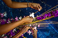 """Salvadoran women work on a floral ornament during the Flower & Palm Festival in Panchimalco, El Salvador, 8 May 2011. On the first Sunday of May, the small town of Panchimalco, lying close to San Salvador, celebrates its two patron saints with a spectacular festivity, known as """"Fiesta de las Flores y Palmas"""". The origin of this event comes from pre-Columbian Maya culture and used to commemorate the start of the rainy season. Women strip the palm branches and skewer flower blooms on them to create large colorful decoration. In the afternoon procession, lead by a male dance group performing a religious dance-drama inspired by the Spanish Reconquest, large altars adorned with flowers are slowly carried by women, dressed in typical costumes, through the steep streets of the town."""