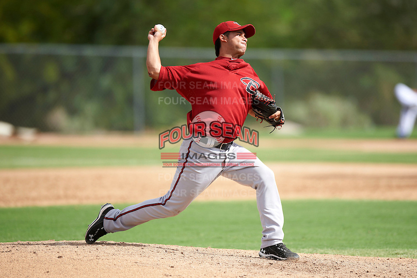 Arizona Diamondbacks minor league pitcher Silvino Bracho #15 during an instructional league game against the Oakland Athletics at the Papago Park Baseball Complex on October 11, 2012 in Phoenix, Arizona.  (Mike Janes/Four Seam Images)