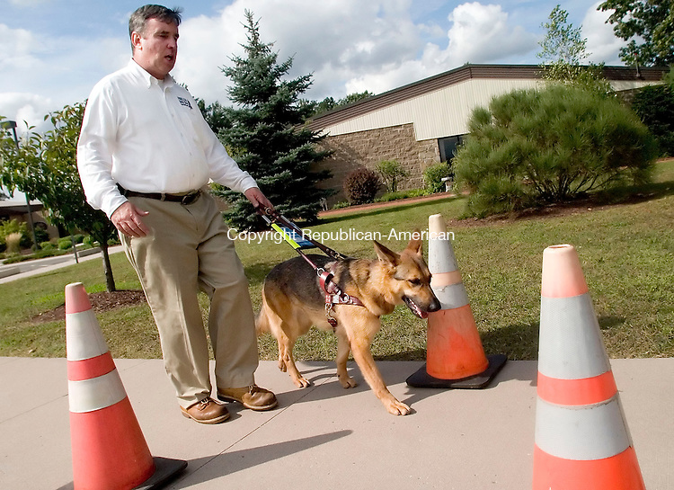 BLOOMFIELD, CT- 13 SEPT 06- 0913006JT03- <br /> Peter Nowicki, director of training at the Fidelco Guide Dog Foundation, takes two-year-old Demi around an obstacle course outside the company's offices in Bloomfield on Wednesday. Demi has been in training for six months, and will soon be sent to a client in California. The dogs are trainined to stop at curbs, conduct safe street crossings, ride escalators, and work in mass transit environments, as well as various other needs that a client may have.<br /> Josalee Thrift Republican-American