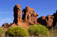 Parade of the elephants rock formation in Arches national park, Utah, USA
