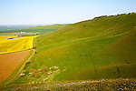 Chalk escarpment in the Vale of Pewsey, from Milk Hill, near Alton Barnes, Wiltshire, England