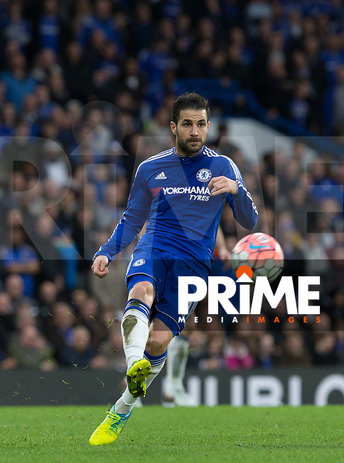 Cesc Fabregas of Chelsea in action during the FA Cup 5th round match between Chelsea and Manchester City at Stamford Bridge, London, England on 21 February 2016. Photo by Andy Rowland.