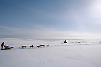 M.Seavey on Trail in Topkok Hills Between White Mtn &amp; Nome<br /> 2004 Iditarod