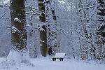 Europa, DEU, Deutschland, Nordrhein Westfalen, NRW, Rheinland, Niederrhein, Neukirchen Vlyn, Waldweg, Schnee, Baeume, Bank, Sitzbank, Kategorien und Themen, Natur, Umwelt, Landschaft, Jahreszeiten, Stimmungen, Landschaftsfotografie, Landschaften, Landschaftsphoto, Landschaftsphotographie, Symbole, Symbolik, Symbolsprache, Symbolfoto, Symbolfotografie, Symbolbild, Zeichen, Symbolzeichen....[Fuer die Nutzung gelten die jeweils gueltigen Allgemeinen Liefer-und Geschaeftsbedingungen. Nutzung nur gegen Verwendungsmeldung und Nachweis. Download der AGB unter http://www.image-box.com oder werden auf Anfrage zugesendet. Freigabe ist vorher erforderlich. Jede Nutzung des Fotos ist honorarpflichtig gemaess derzeit gueltiger MFM Liste - Kontakt, Uwe Schmid-Fotografie, Duisburg, Tel. (+49).2065.677997, ..archiv@image-box.com, www.image-box.com]
