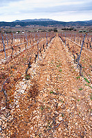 Mont Tauch Cave Cooperative co-operative In Tuchan. Fitou. Languedoc. Terroir soil. France. Europe. Vineyard.