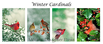 Winter cardinals card set
