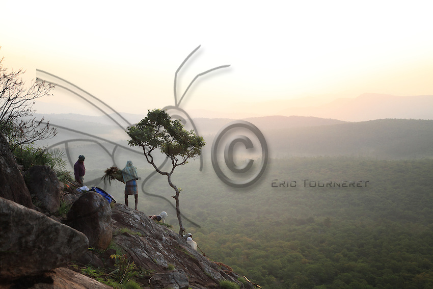 Sunrise over the hills of Tamil Nadu. A single tree can be seen against the background of hills. In a few moments, our ropes will be tied to it and our lives will depend on its roots.