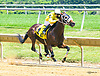Think He's Gone winning at Delaware Park on 7/19/17