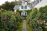 MASSACHUSETTS, Martha's Vineyard, Cottage and flower garden in Edgartown.