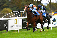 Winner of The British Stallion Studs EBF Bathwick Tyres Conditions Stakes, Gorge William ridden by Tom Marquand and trained by Richard Hannon during Bathwick Tyres Reduced Admission Race Day at Salisbury Racecourse on 9th October 2017