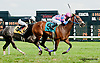At First Speight winning at Delaware Park on 7/24/13