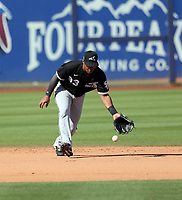 Yolbert Sanchez - Chicago White Sox 2020 spring training (Bill Mitchell)