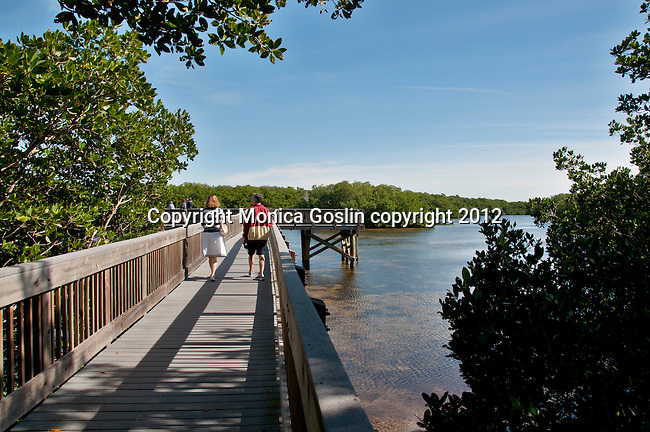 A wooden pier at a nature park just outside of St. Petersburg, Florida