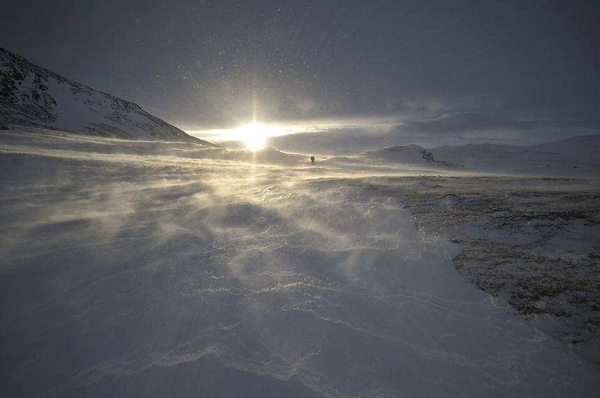 Dovre national park,Norway Landscape, landskap,