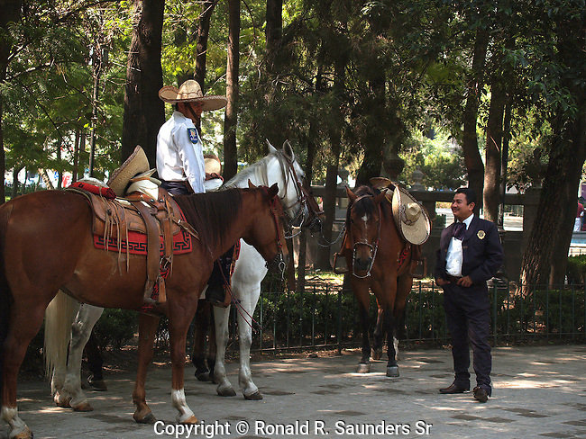 MEXICAN POLICE AND HORSES IN MEXICO CITY PARK