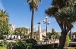 Trees around Plaza de la Angustas, Jerez de la Frontera, Spain