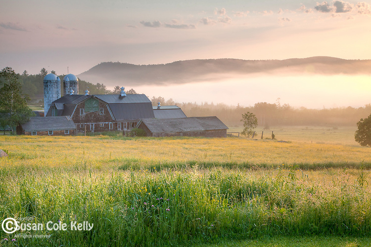 Morning mist at a farm in Sugar Hill, NH, USA