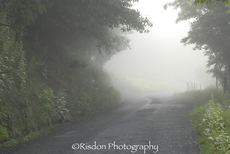 Foggy Doe Hill Road